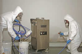 Basement Mold Remediation Process